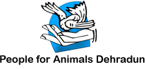 People for Animals,